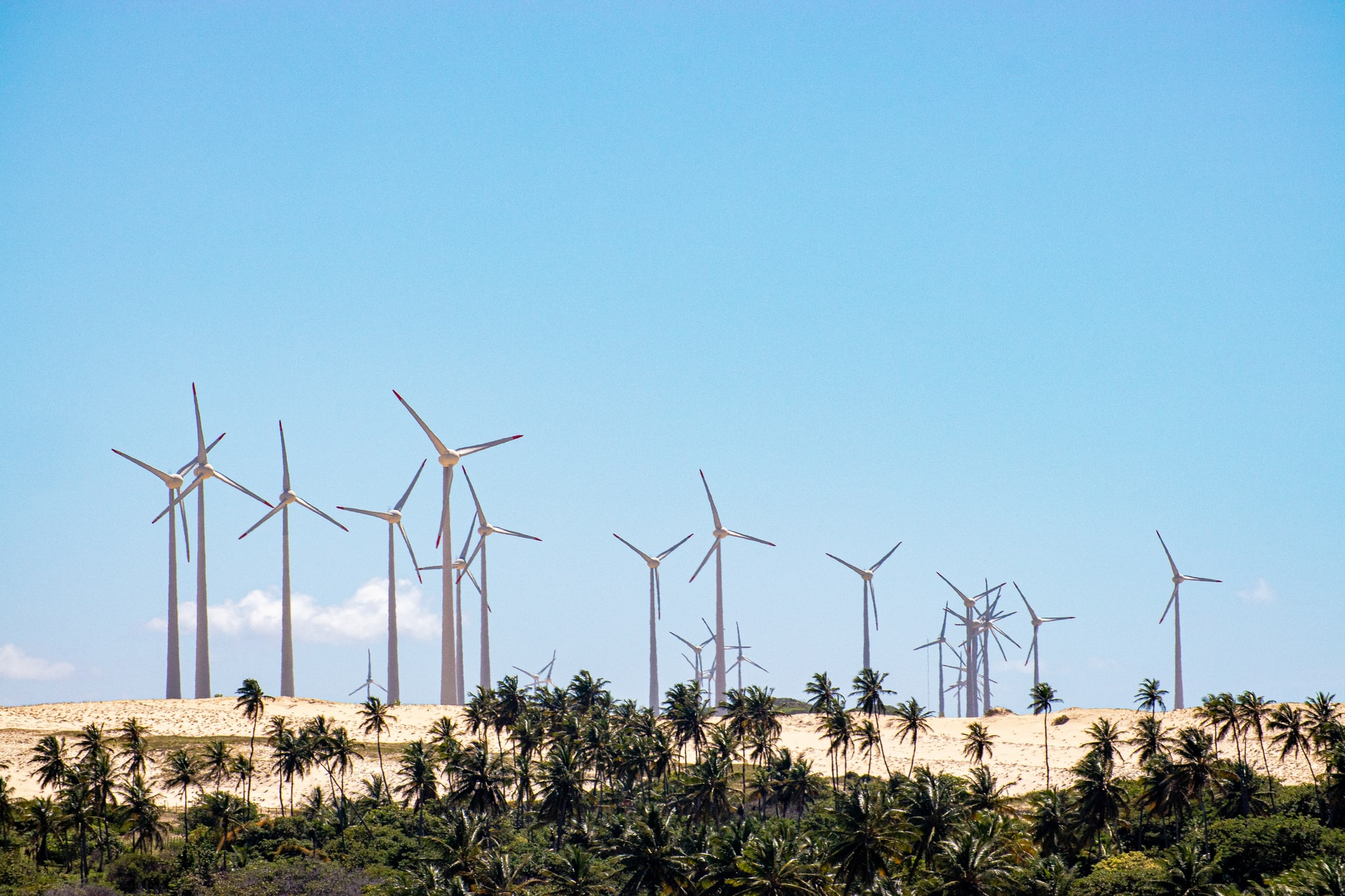 Parque eólico Cajuína